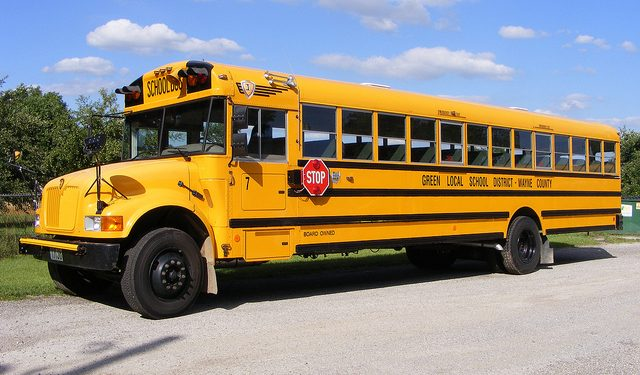 New Brunswick school bus driver arrested for allegedly crashing bus while impaired