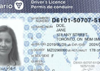 Ford government redesigns Ontario driver's license cards to combat identity theft