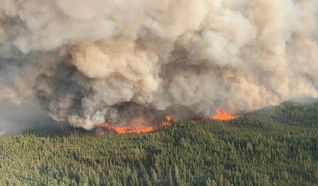 RCMP finds Alberta wildfires started by arson