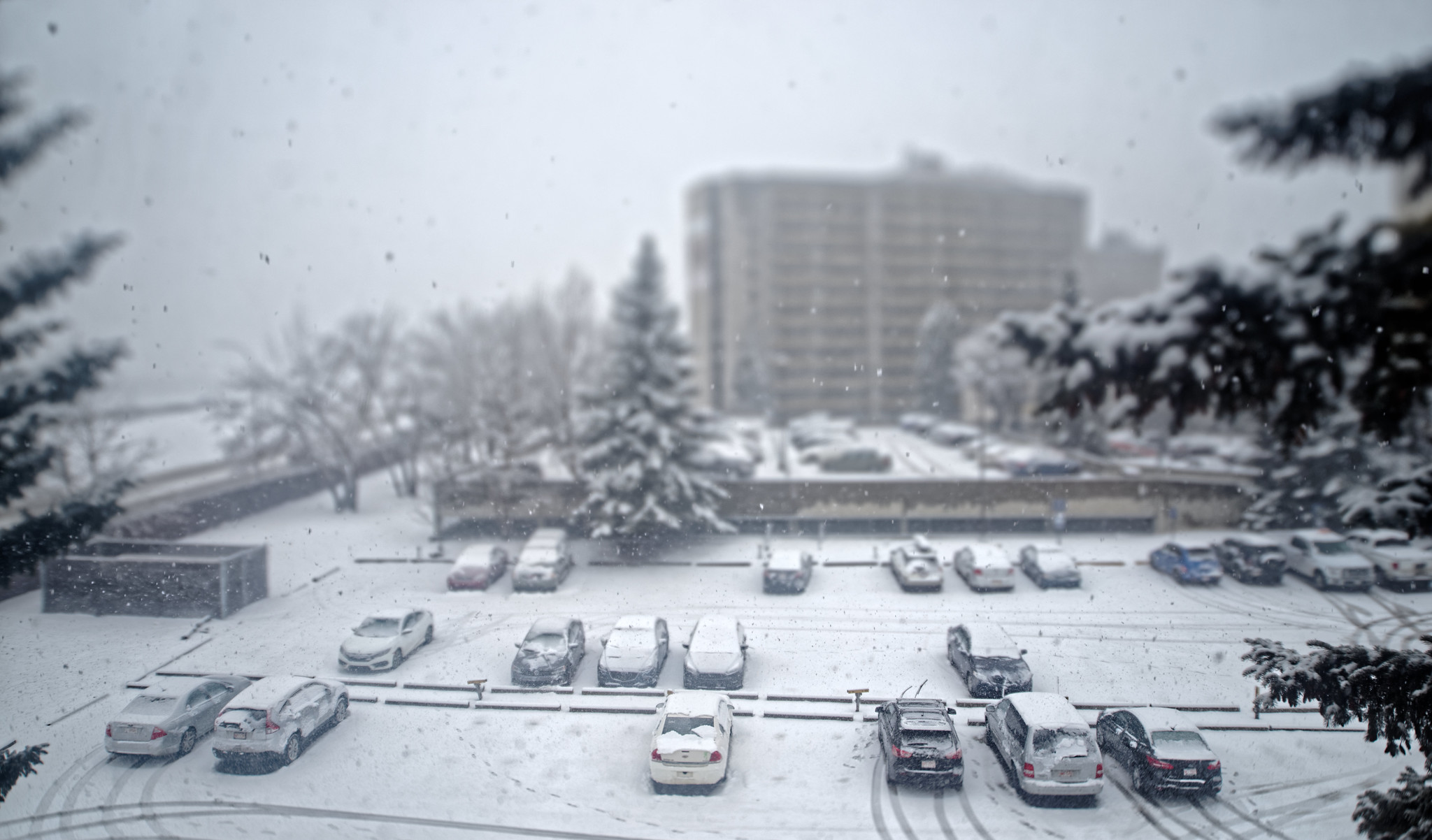 Parts of Alberta to receive 60+ cm of snow this weekend