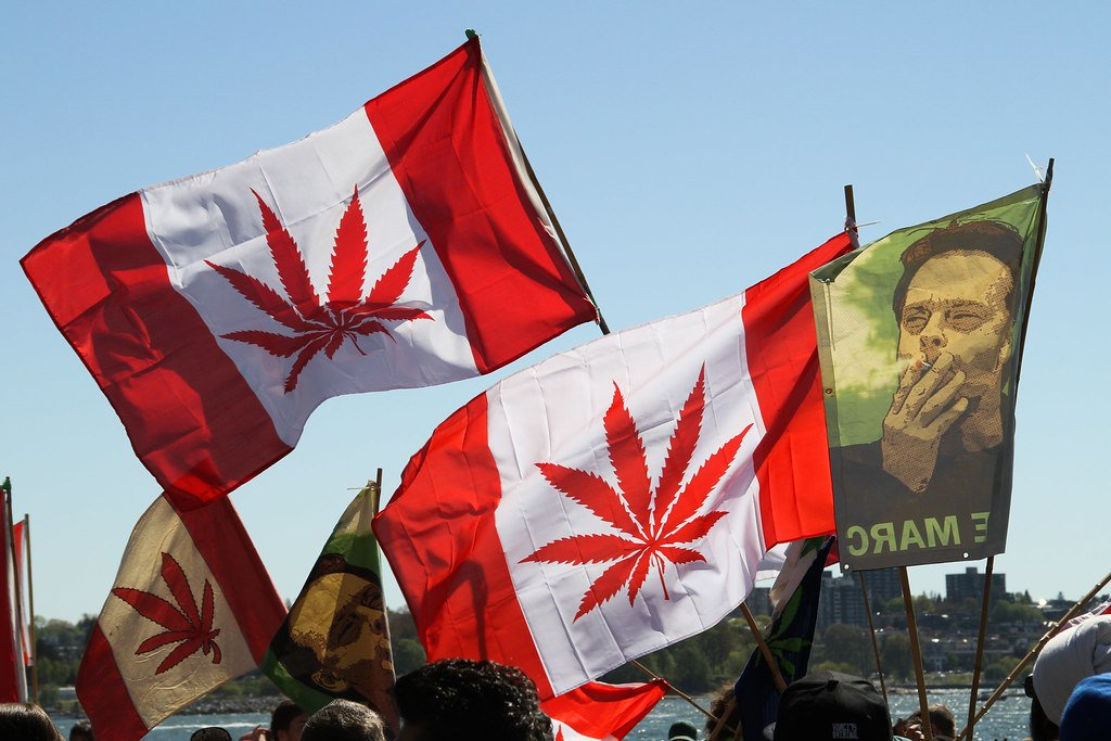 TOO MUCH WEED: Government has over 30 times more marijuana than it's able to sell