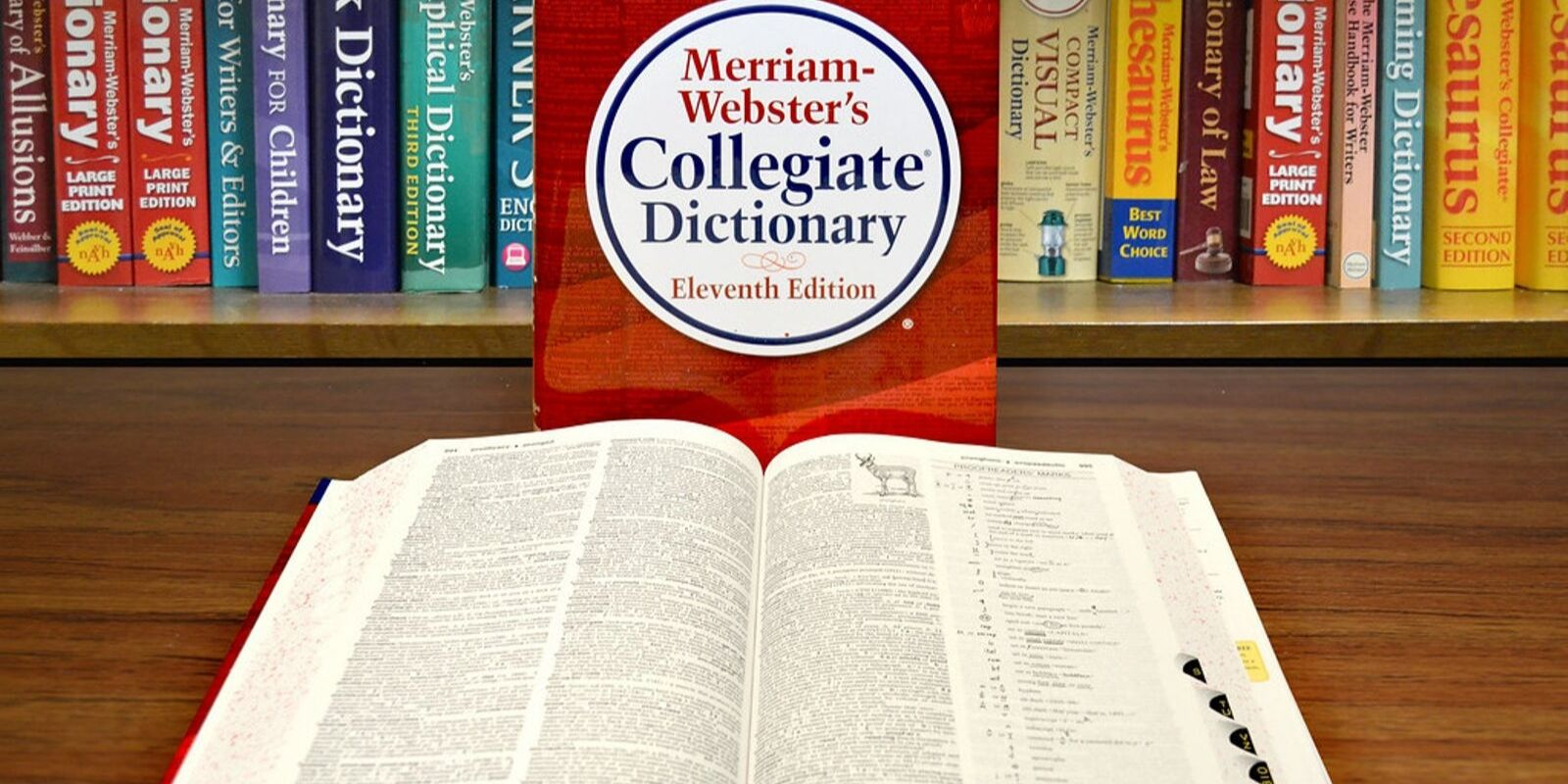 """Nonbinary pronoun """"they""""  officially added to the Merriam-Webster Dictionary"""