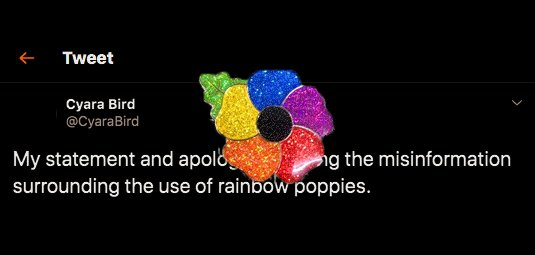 Former Conservative party candidate apologizes for viral rainbow poppy tweet