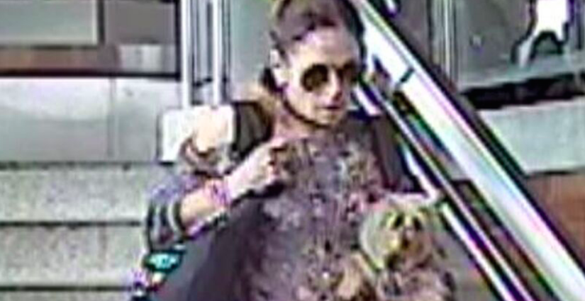 DOG THIEF: Police search for Toronto woman who stole dog on subway