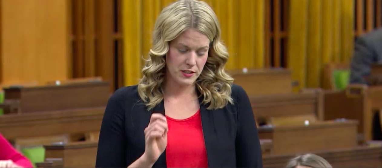 WATCH: Liberal MPs laugh at TPM report on MasterCard lobbyist's ties to Liberals