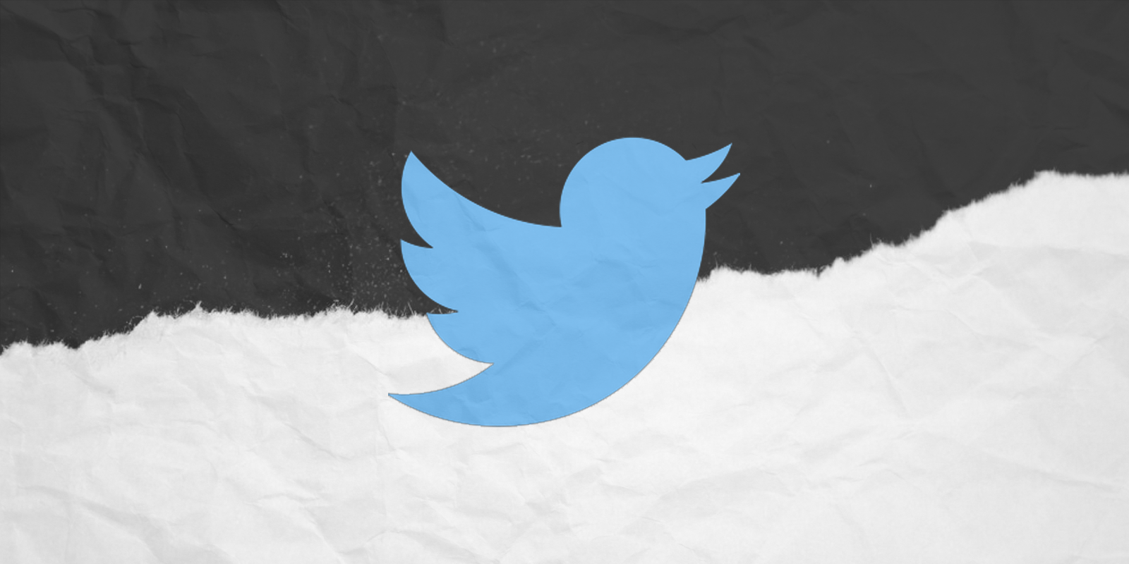 Defining trans accurately now gets you banned from Twitter