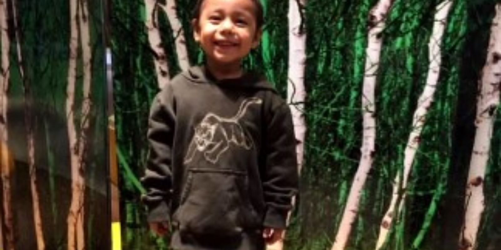 Winnipeg toddler stabbed while sleeping will be taken off life support