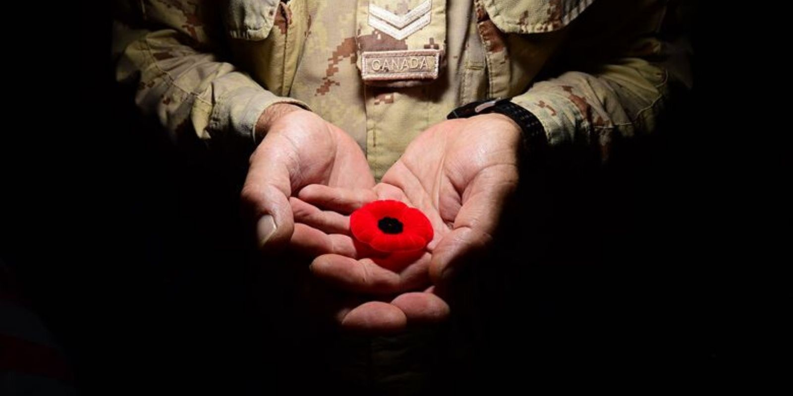 This Remembrance Day support a Veteran