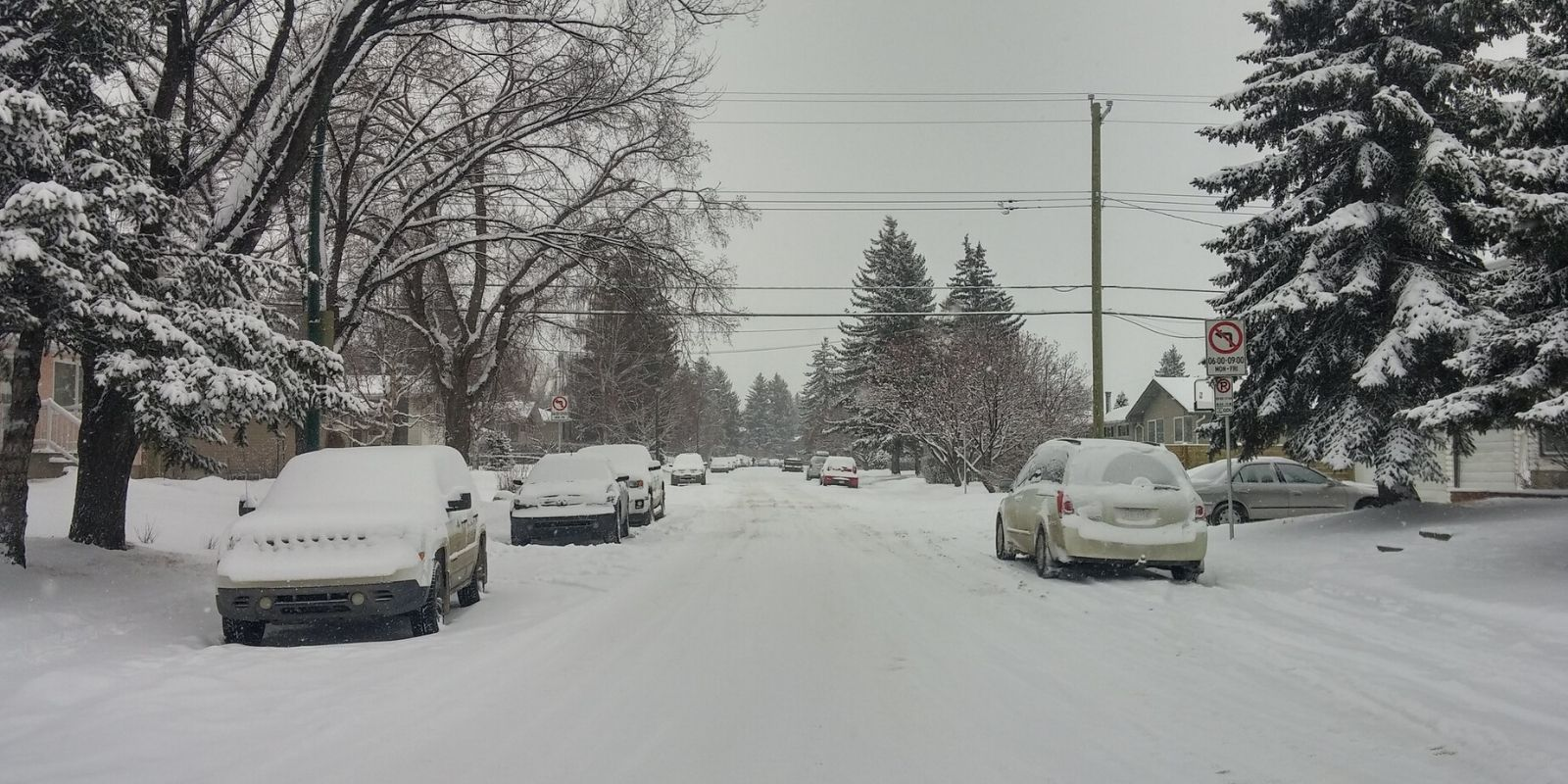 Southern Alberta pummeled by 20 cm of snow