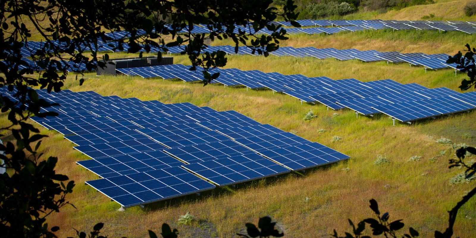 Canada's largest solar farm will be in southern Alberta