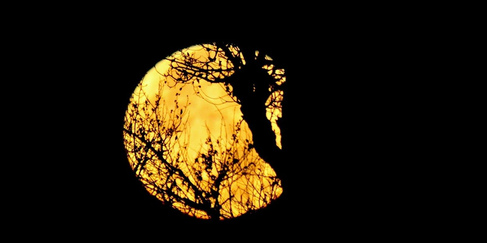 Just in the nick of time: Thanksgiving to be accompanied by Hunter's Moon