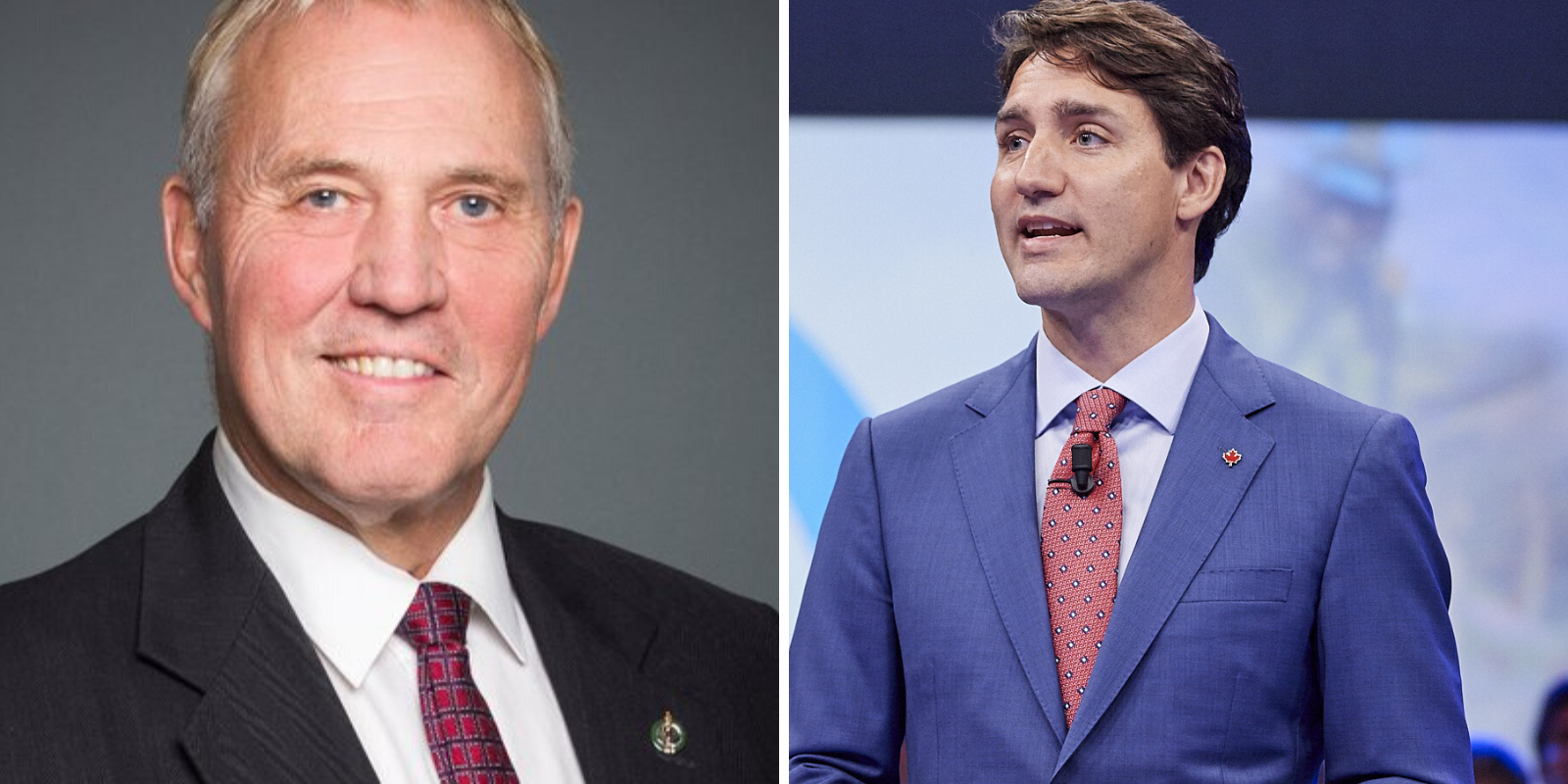 Trudeau government's gun control strategy to be implemented soon