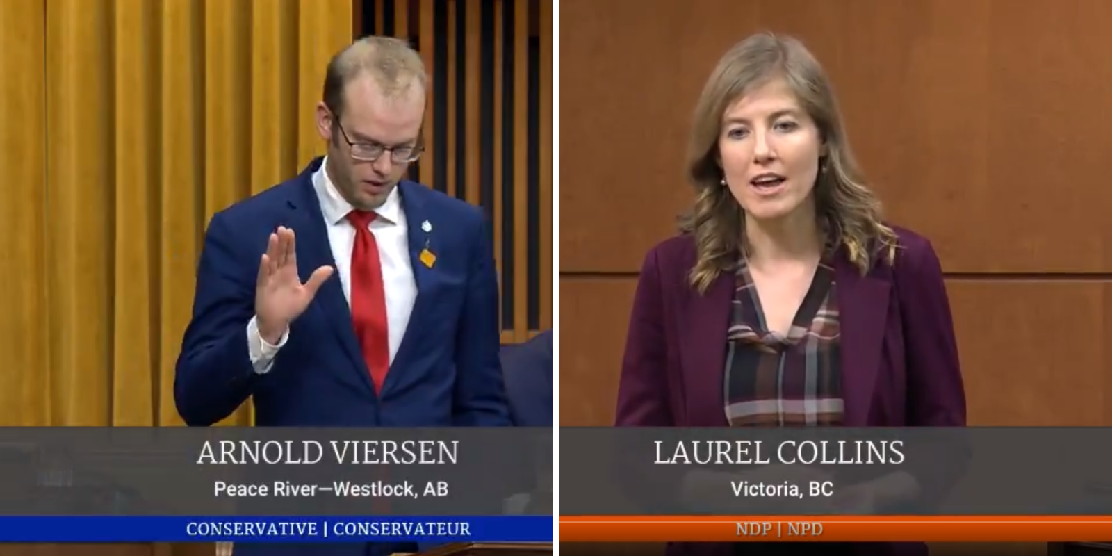WATCH: Conservative MP asks NDP MP if she has ever considered sex work