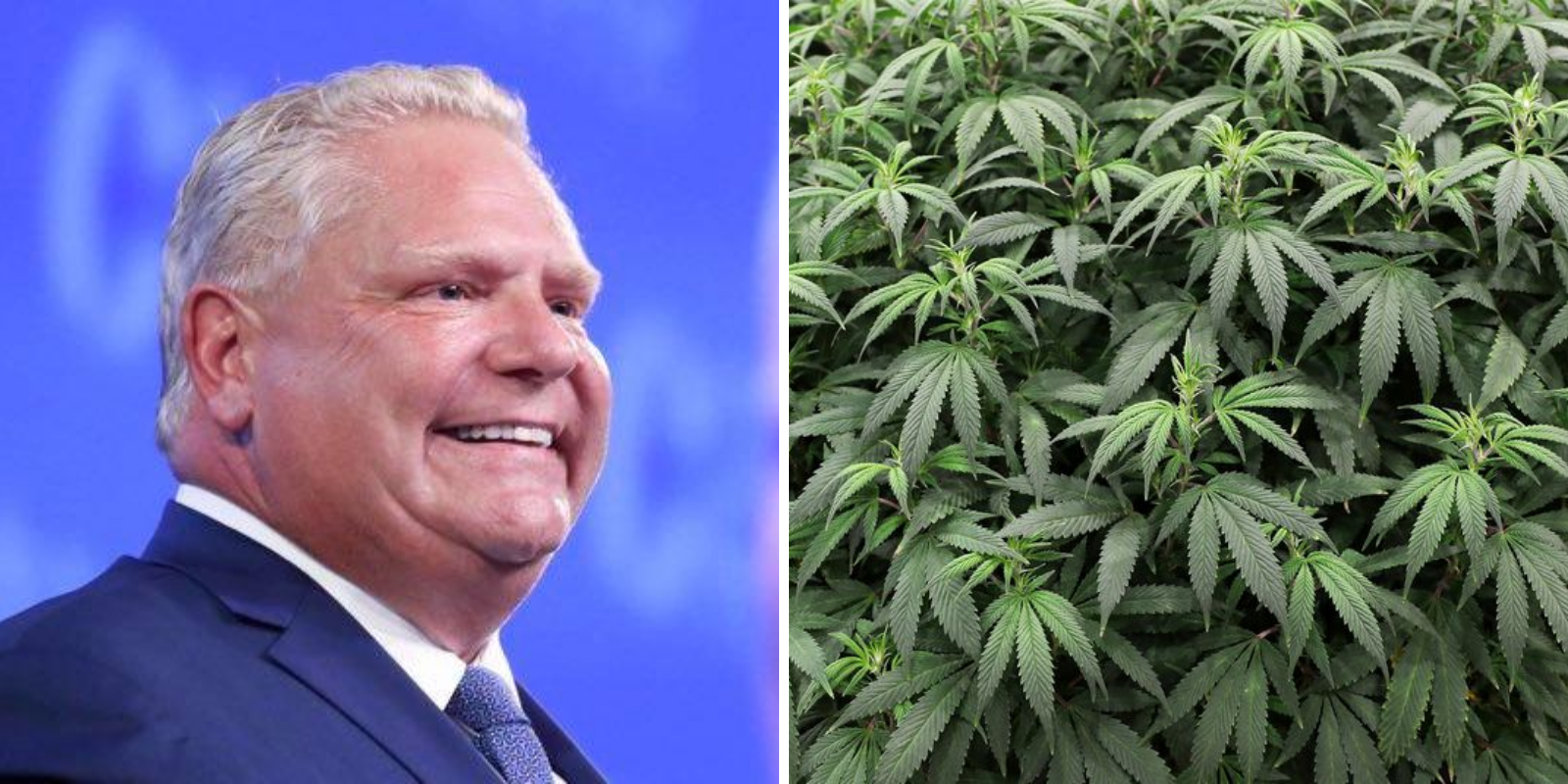 Ford government opens up cannabis market to retailers