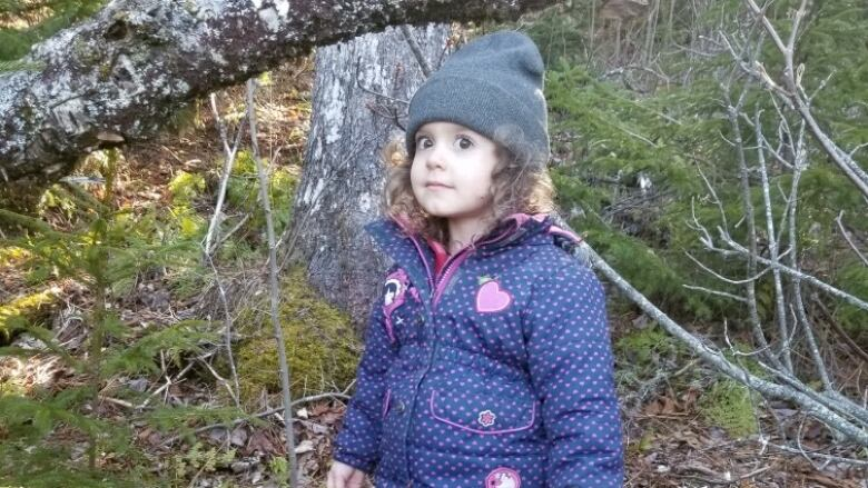 UPDATE: 3-year-old Nova Scotia girl found by police