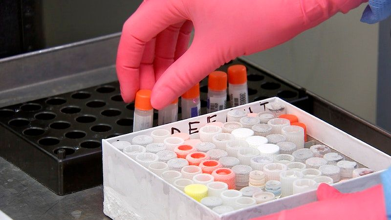 Coronavirus home test kits could be available sooner than we think