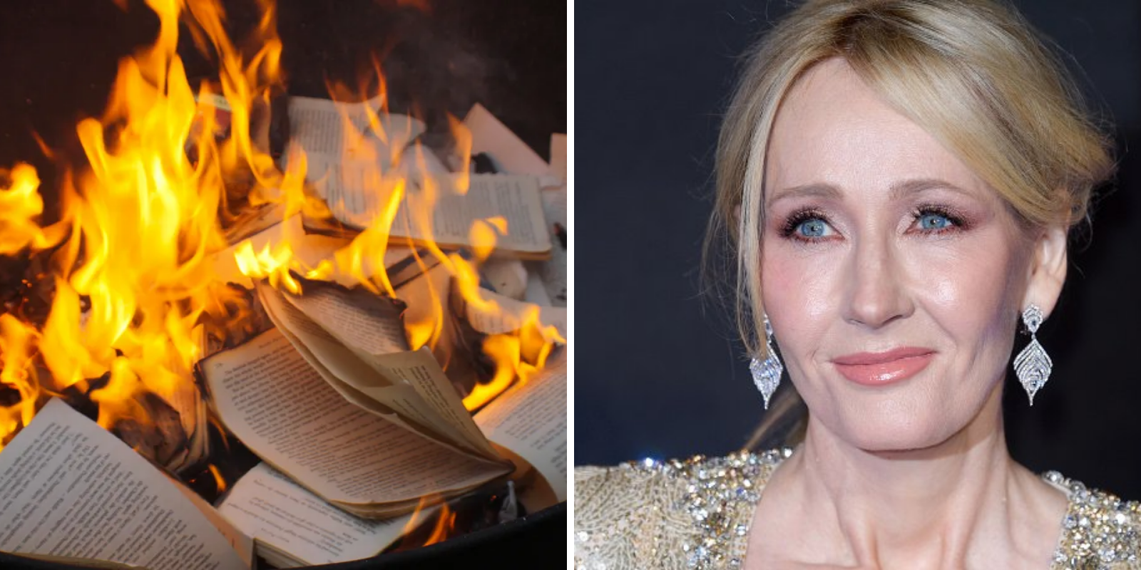 Celebrities and activists call for JK Rowling's books to be burned