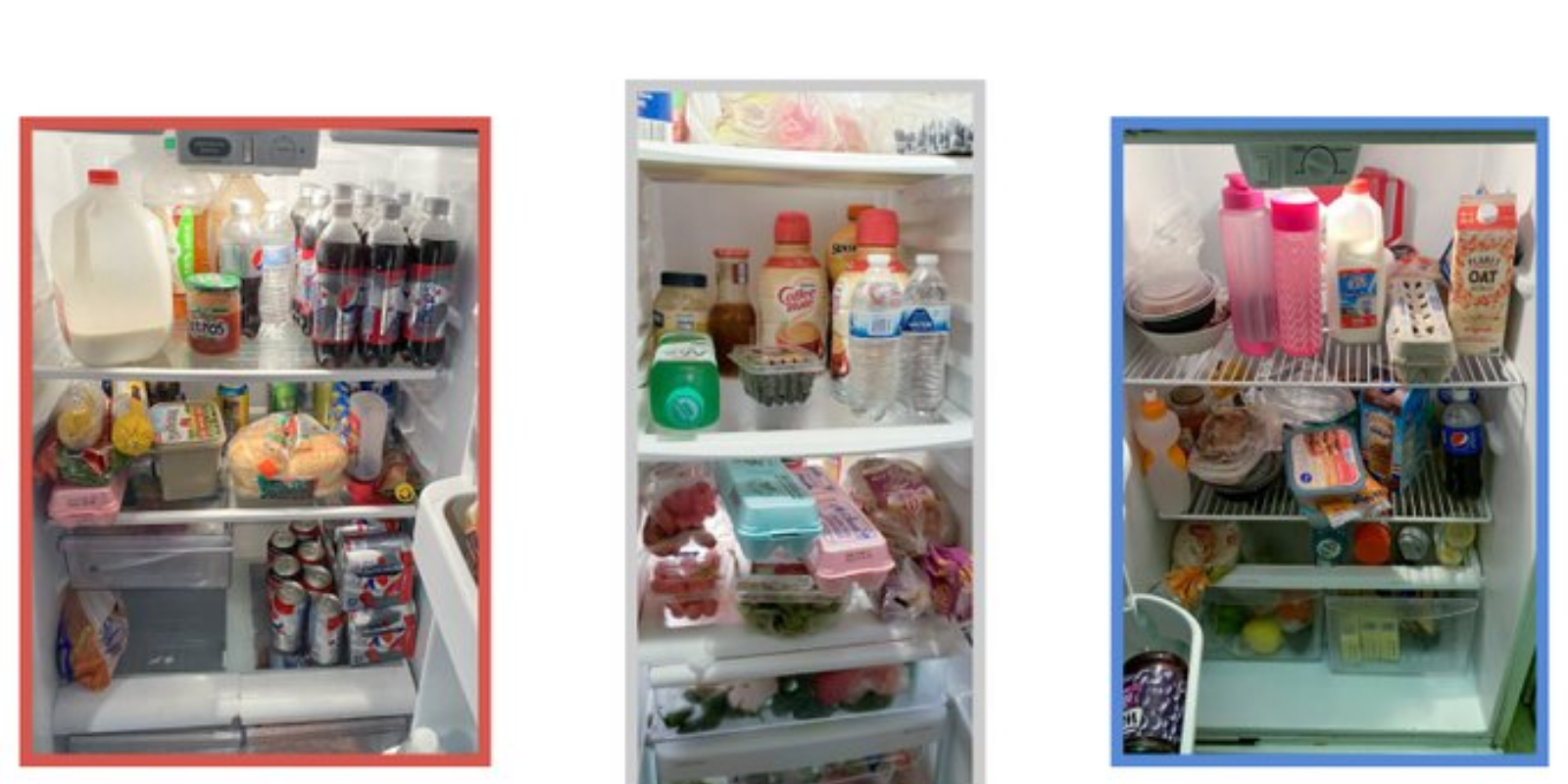 Can you tell the difference between Biden and Trump voters based on fridge contents? The New York Times sure thinks so