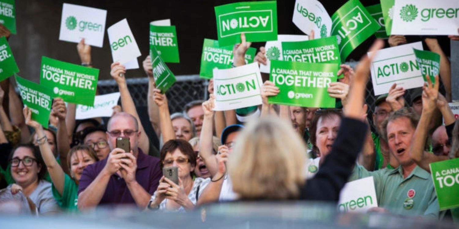 Green Party leadership race in chaos after ballots and donations go missing