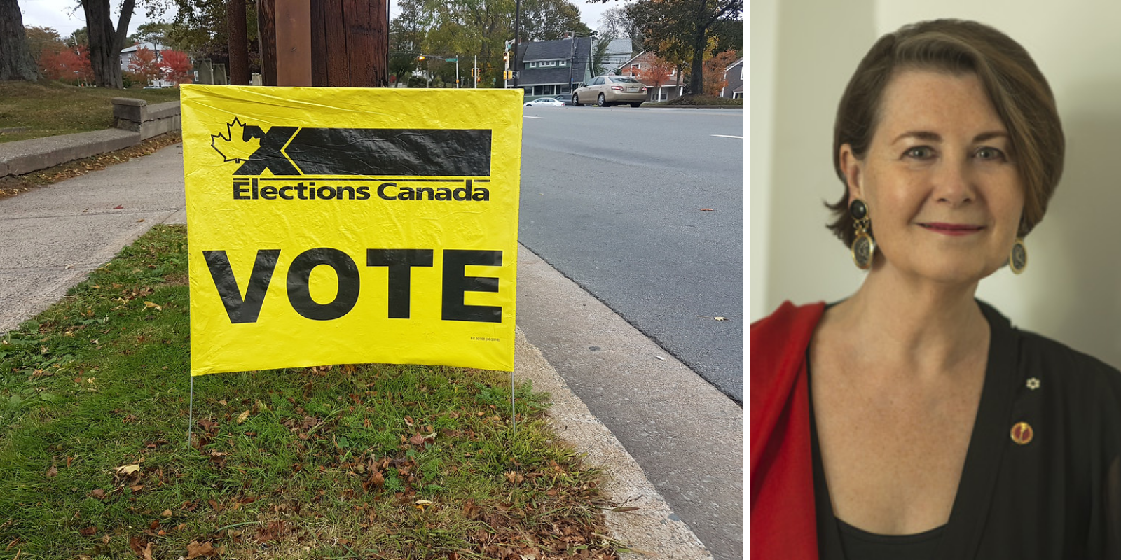 Liberal-appointed senator supports bill that would give 16-year-olds the vote