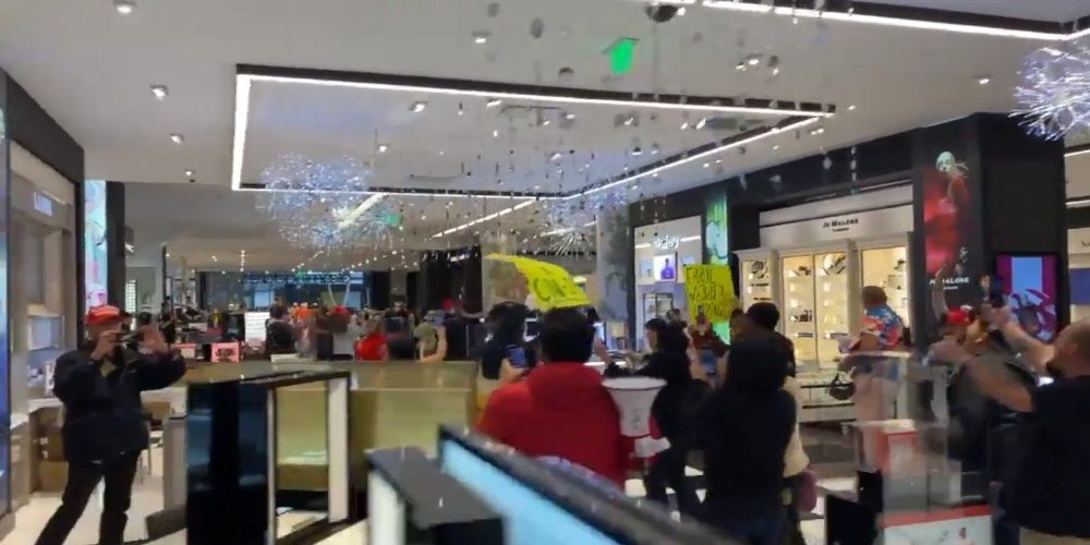 WATCH: Mall brawl breaks at Los Angeles anti-mask protest
