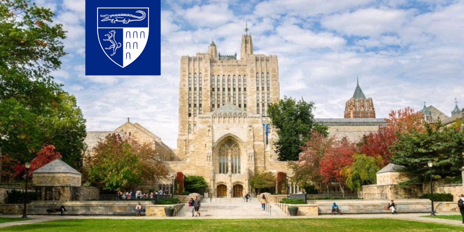 Yale Law Journal ex-editor apologizes for 'racist' admission practices while black students are admitted at higher rate than others