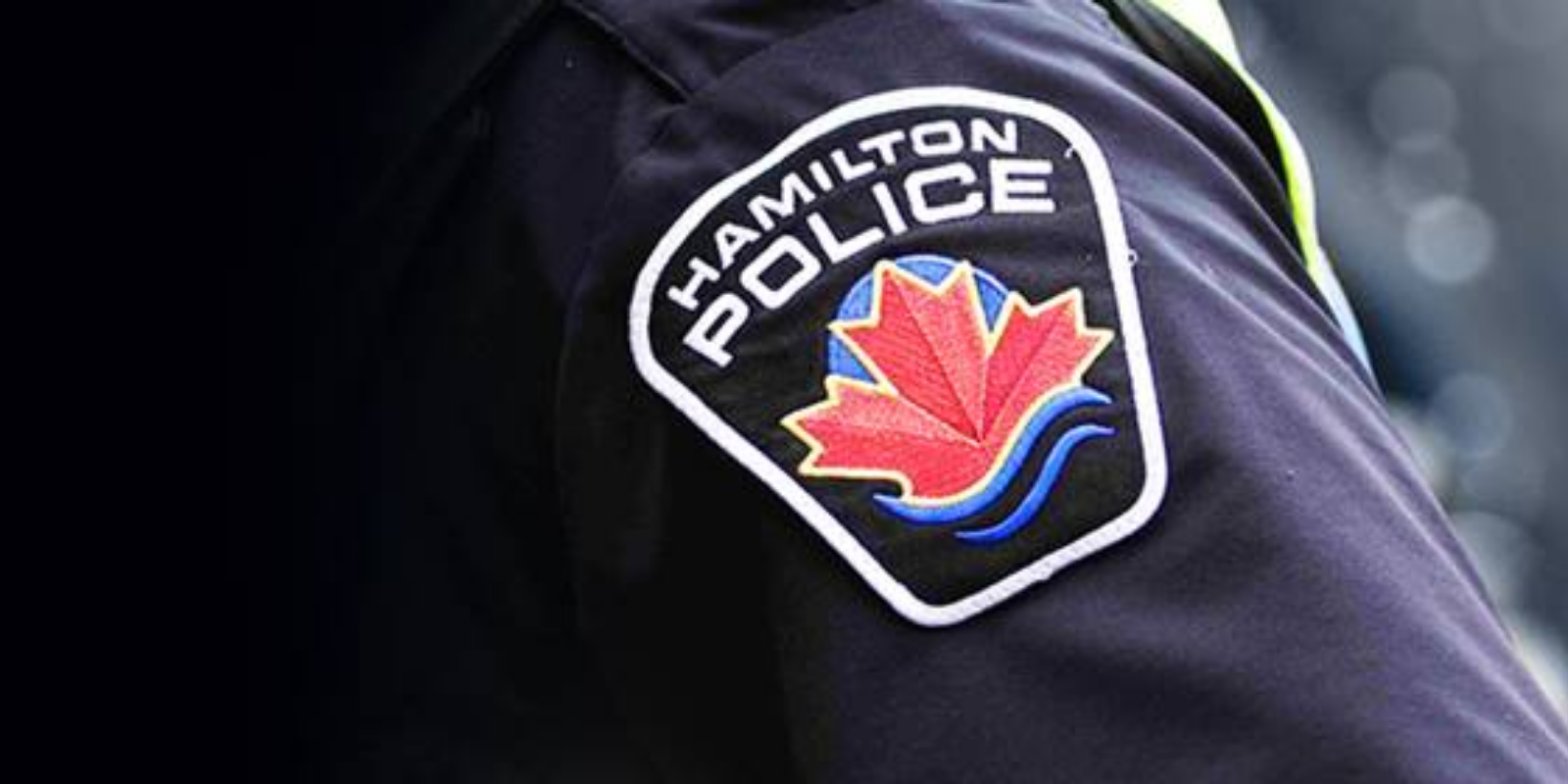 Hamilton Police charge 3 anti-lockdown protestors in front of city hall