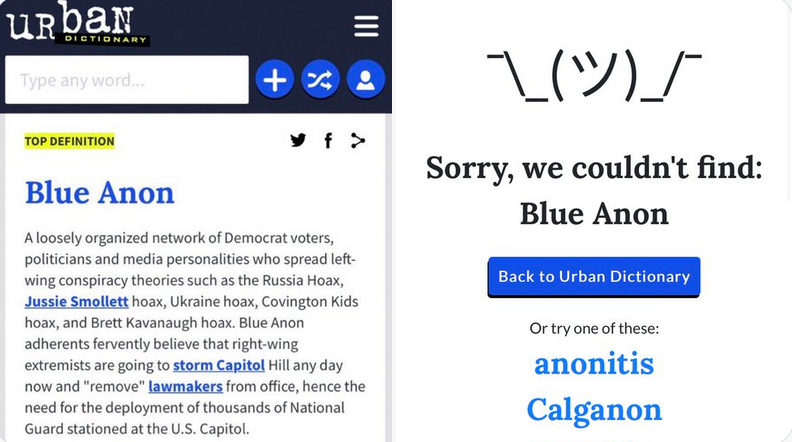 Google and Urban Dictionary censor 'Blue Anon' following widespread mockery of left-wing conspiracy theories