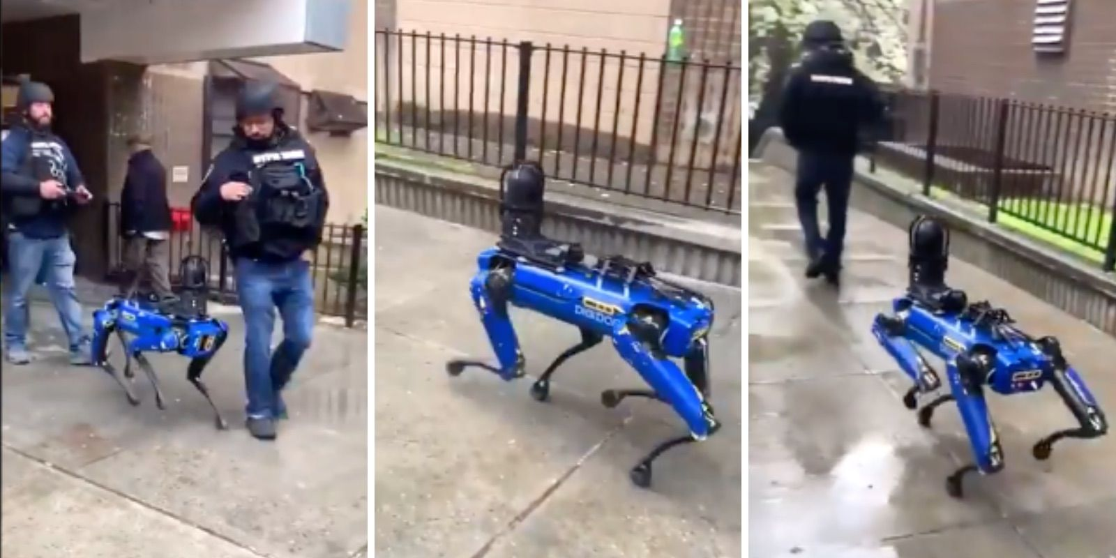 Robot dogs enlisted to fight crime in New York City cost $75,000 each