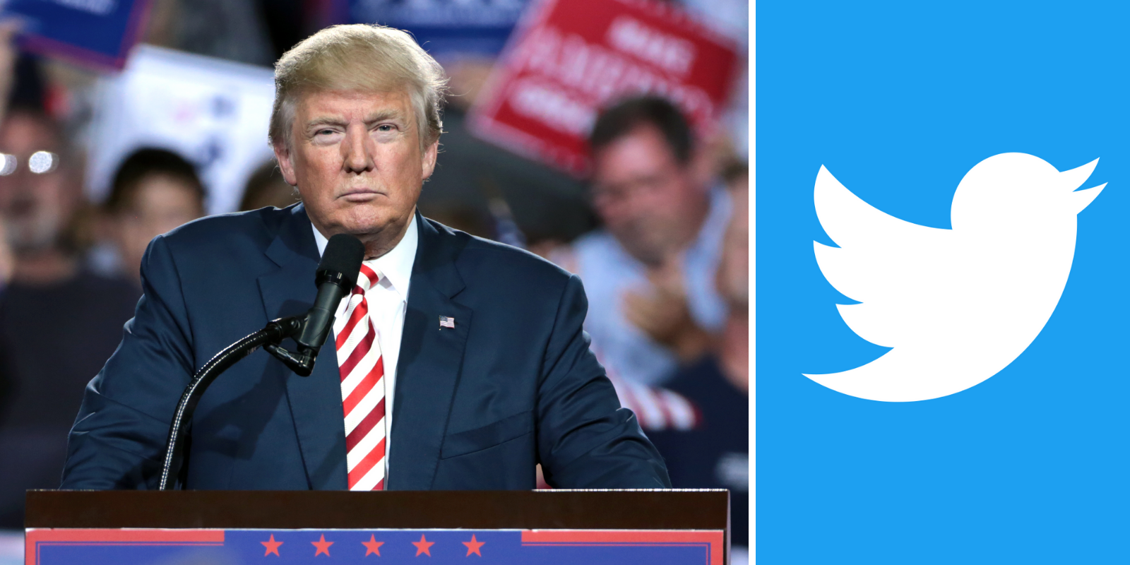 Twitter bans 'From the Desk of Donald J. Trump' account for the crime of reproducing his words