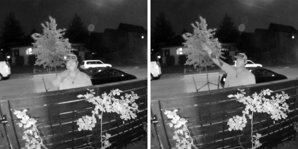Seattle police looking for man who gave Nazi salute and made death threats at Jewish home