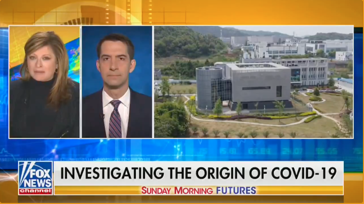 WATCH: Sen. Cotton demands answers on the 'lab leak,' says Fauci is 'playing word games'