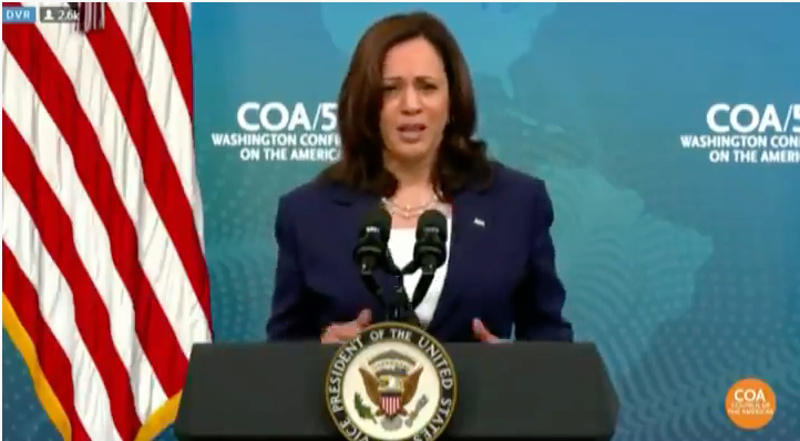 WATCH: Kamala Harris suggests fighting climate change will fix the Biden border crisis