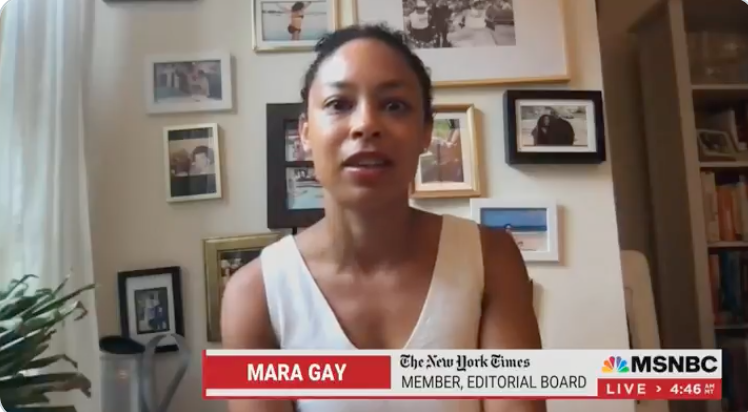 WATCH: New York Times' Mara Gay says seeing 'dozens of American flags' flying is 'just disturbing'