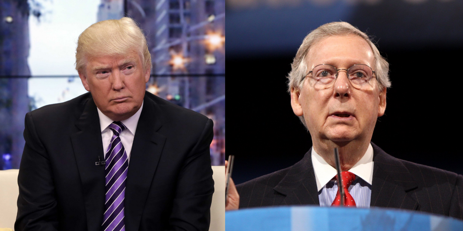 Trump to McConnell and other 'RINOS': stop working with 'Communist Democrats'