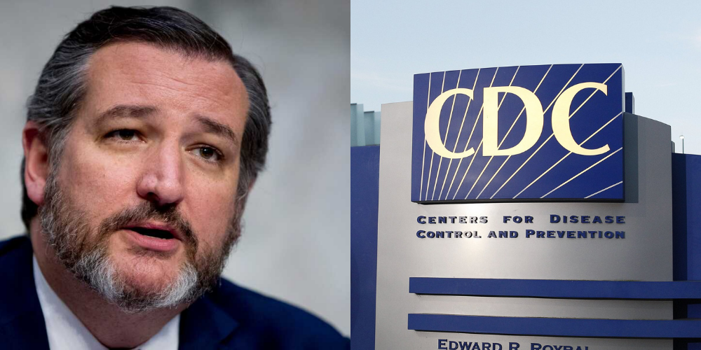 'A virtue signal of submissiveness': Ted Cruz slams new CDC mask guidance