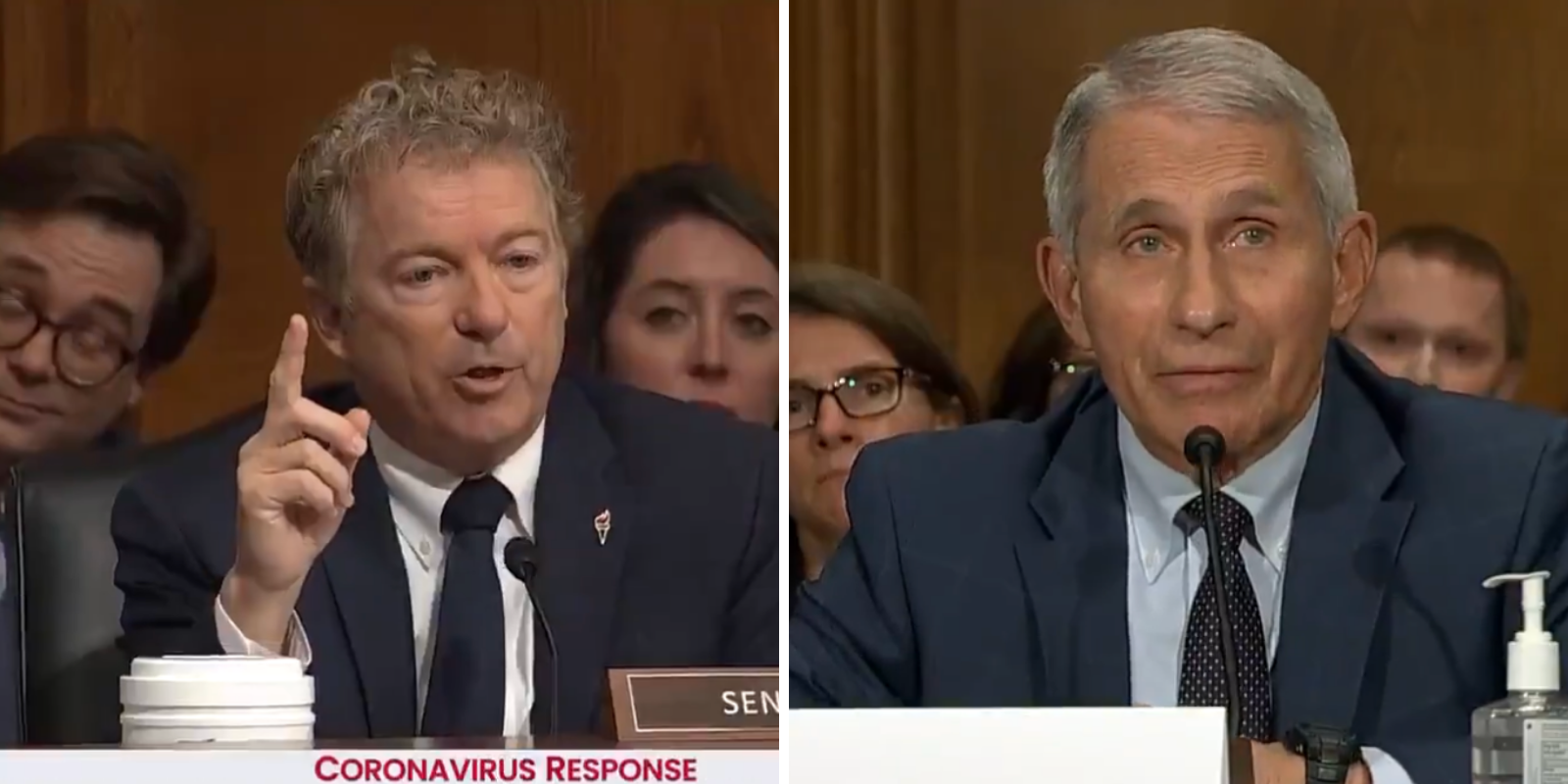 BREAKING: Rand Paul confronts Fauci over 'gain of function' research at Wuhan lab