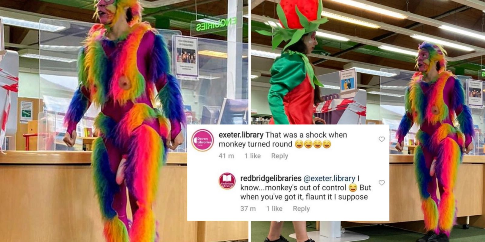 WATCH: Library brings in 'rainbow dildo butt monkey' to teach children about literacy