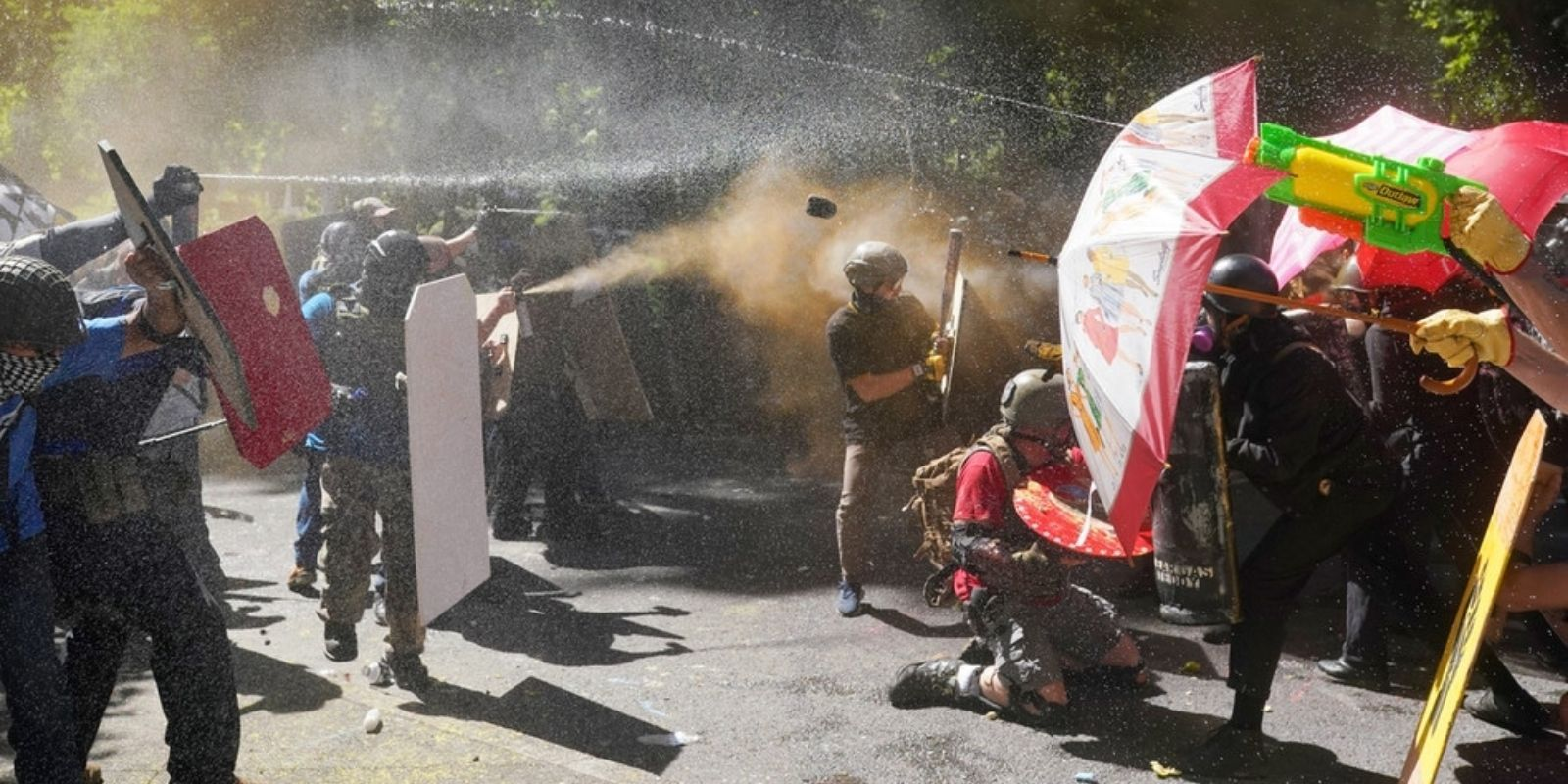Portland police chief says officers won't intervene to protect residents from Antifa rioters