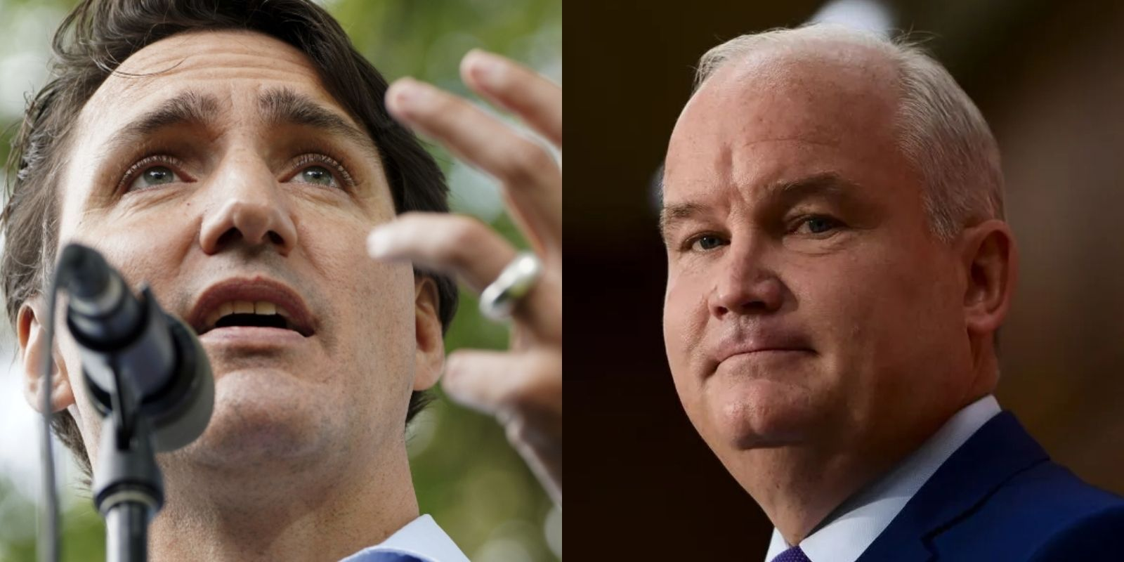 Conservatives overtake Trudeau Liberals again: Poll